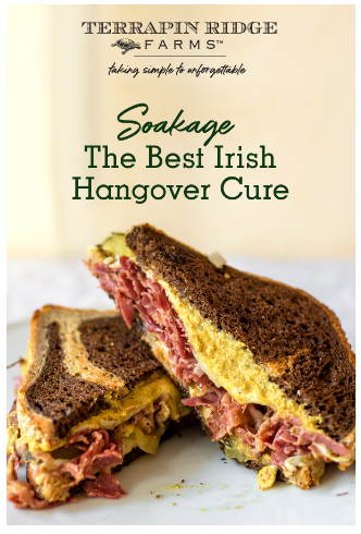 Top 5 Soakage Recipes for After St. Patrick's Day!